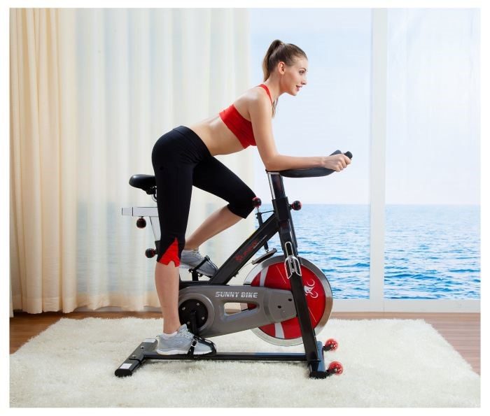 Sunny Health & Fitness Pro Indoor Cycling Bike: Lets modification the exercise vogue considering Sunny