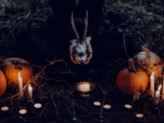 Best-Halloween-Decorations-Ideas-2019-–-Buyer's-Guide